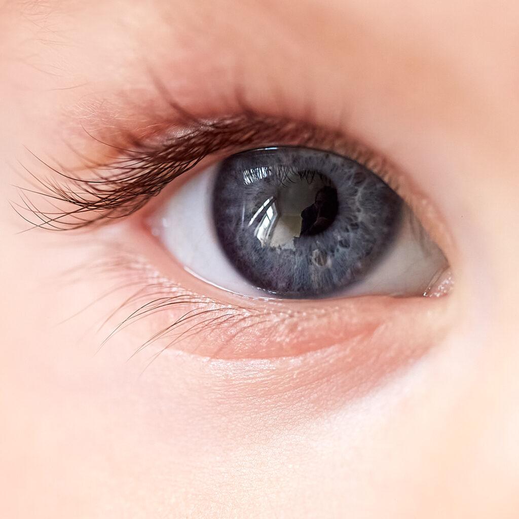 Makro de l'oeil droit de Mirko